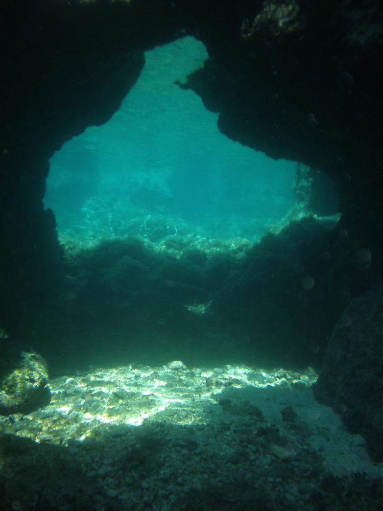Vielseitige Unterwasserlandschaft